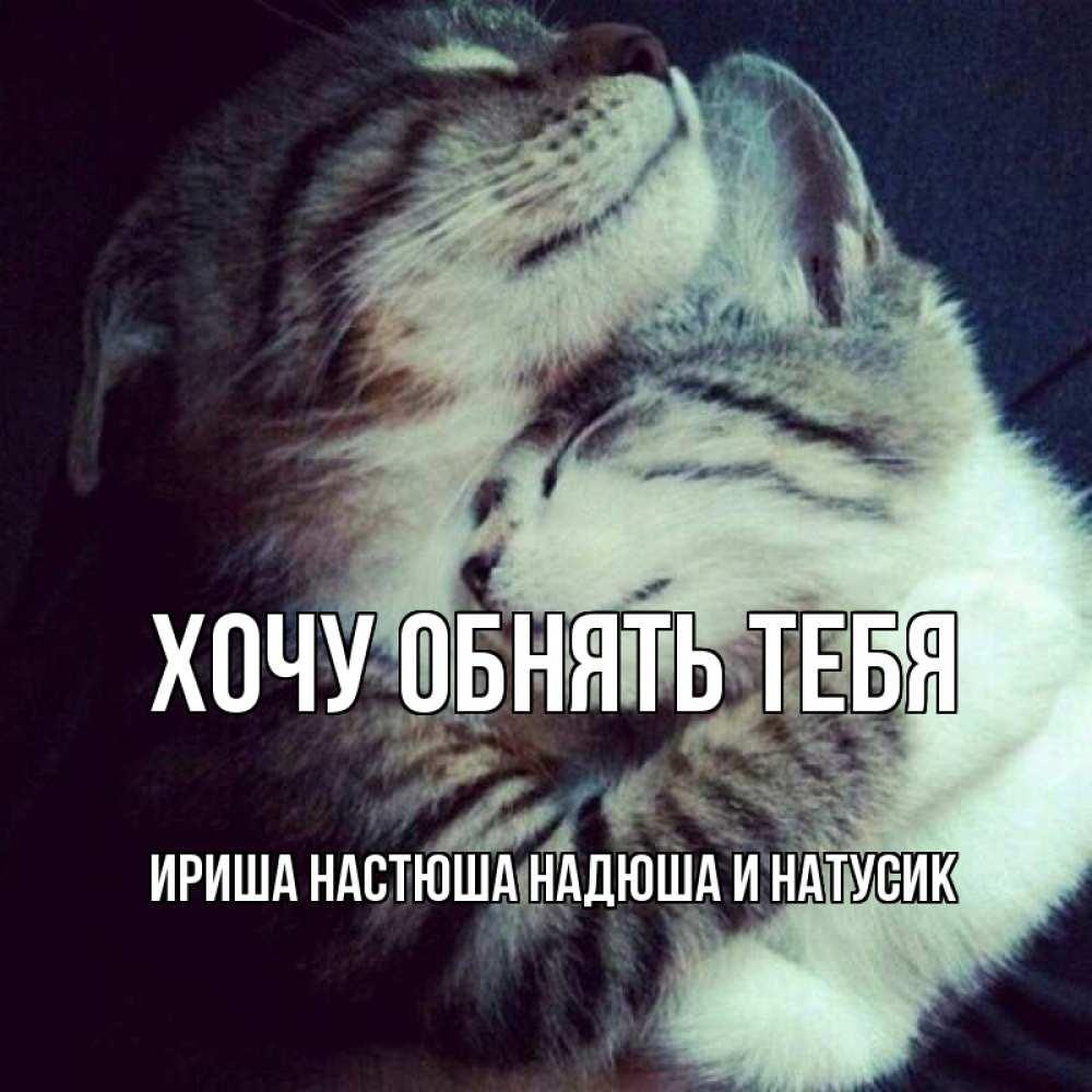 Открытка на каждый день с именем, Ириша-Настюша-Надюша-и-Натусик Хочу обнять тебя полосатики Прикольная открытка с пожеланием онлайн скачать бесплатно