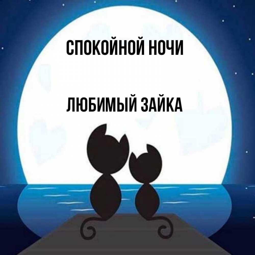 Гифы спокойной ночи любимый зайка, двери прикольные муз