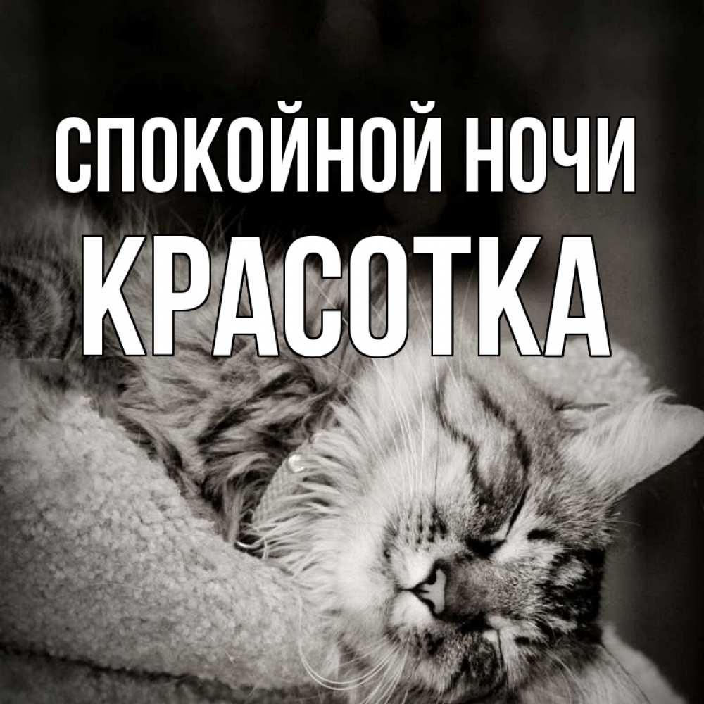 Картинка спокойной ночи котик мой, дружбе