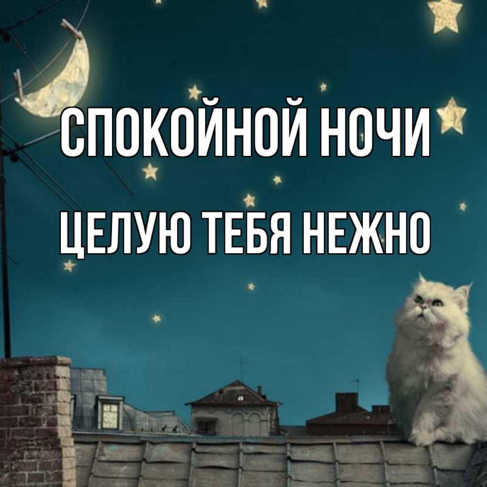 Спокойной ночи картинки целую тебв