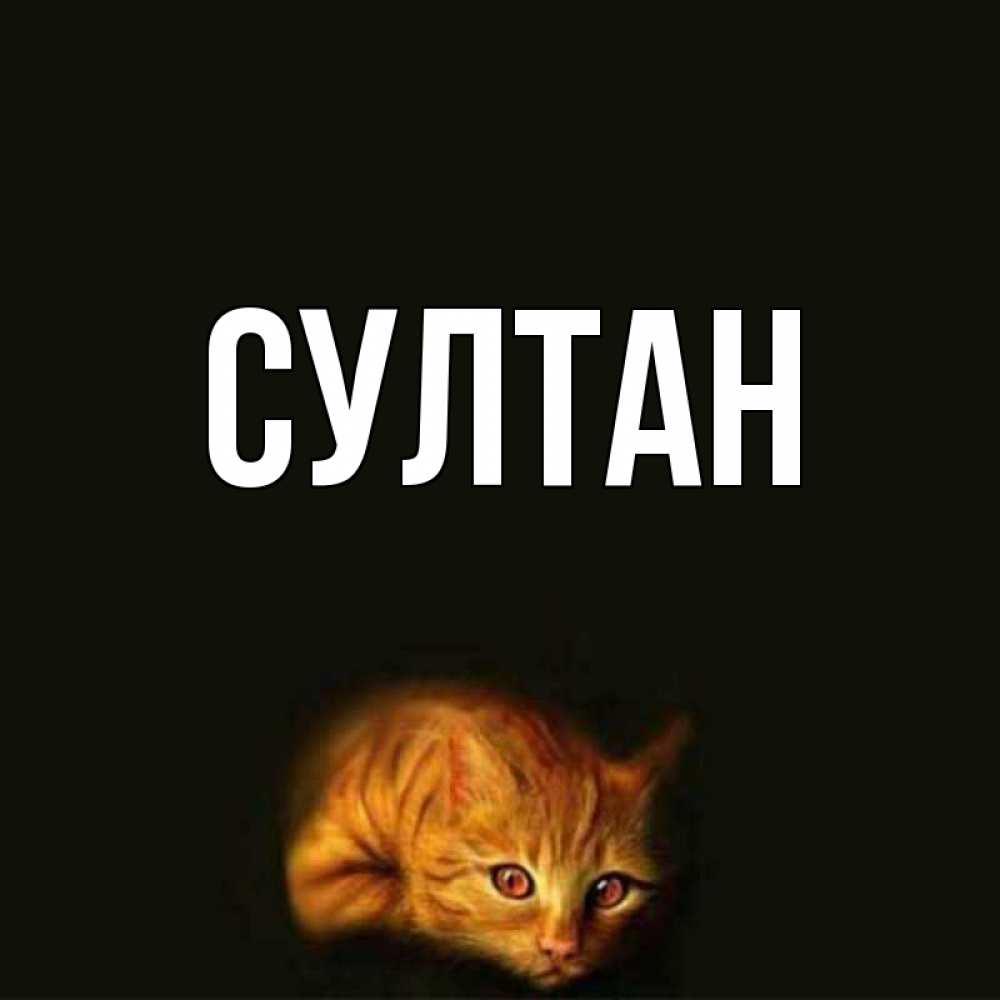 Султан картинки с именем, открыток россии картинки