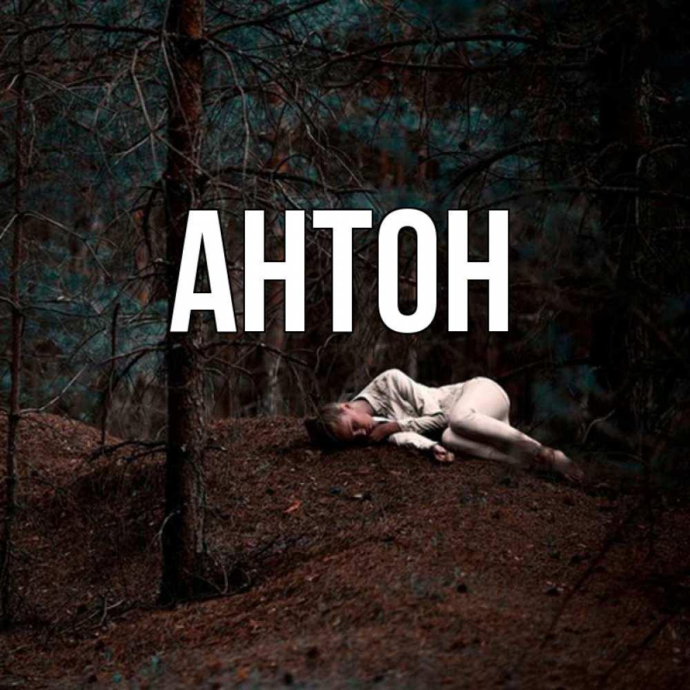 Картинки в стихах с именем антон