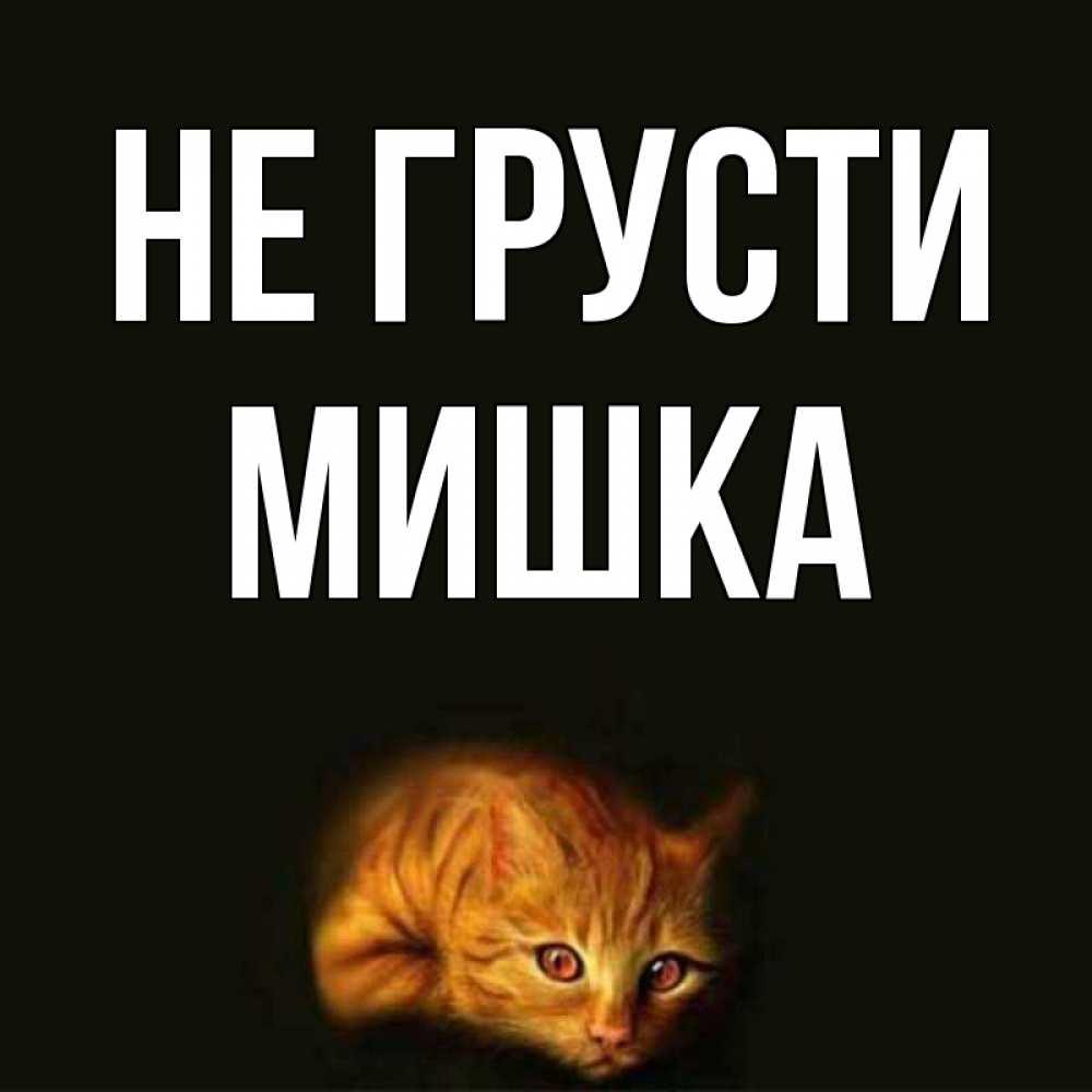 Днем, картинки мишки с надписью не грусти
