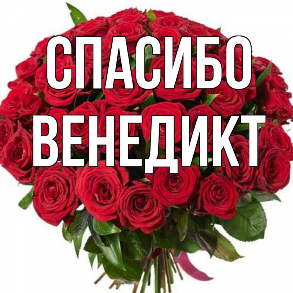 Открытка на каждый день с именем, Венедикт Спасибо букет красных роз Прикольная открытка с пожеланием онлайн скачать бесплатно