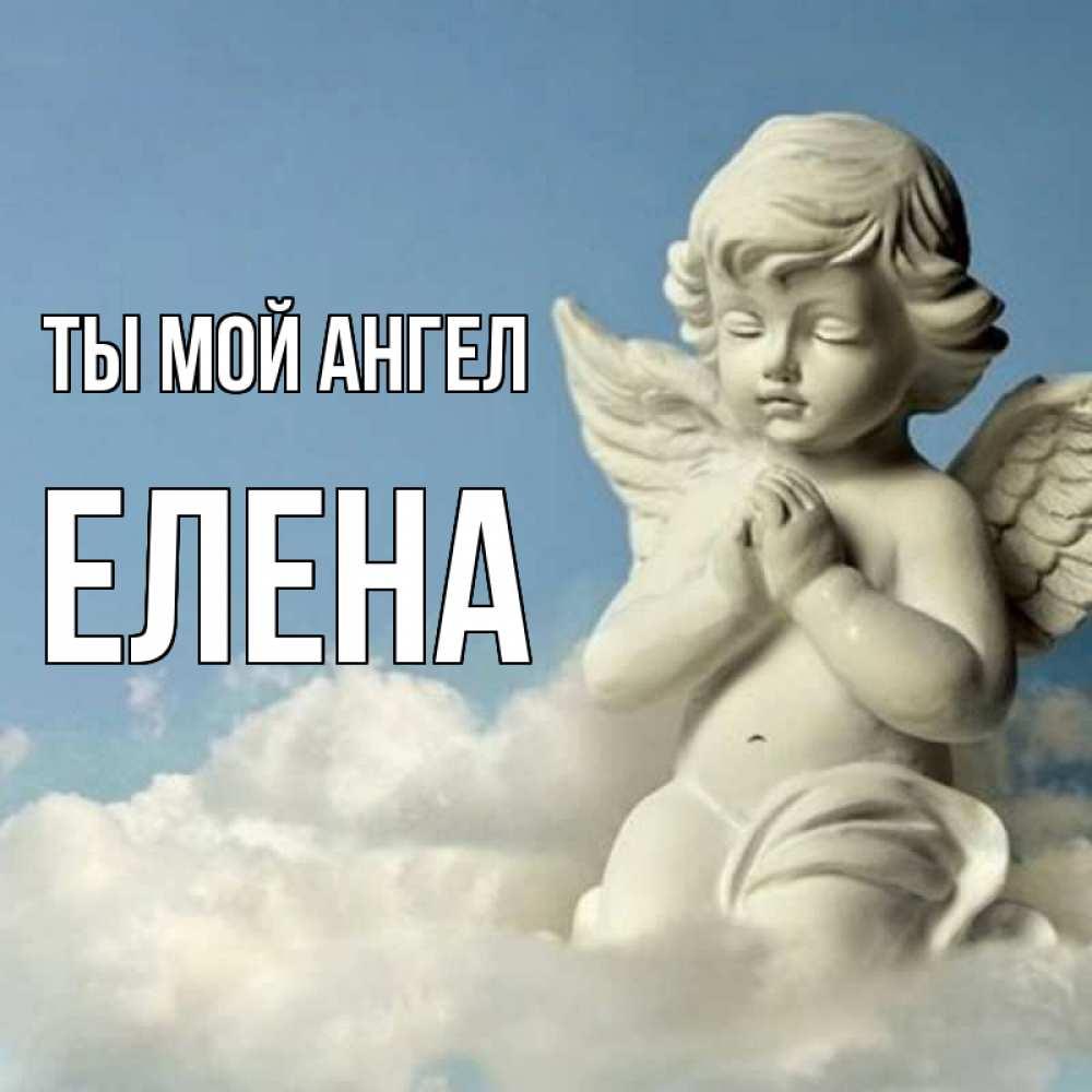 год леночка ты ангел картинки этом домашнем