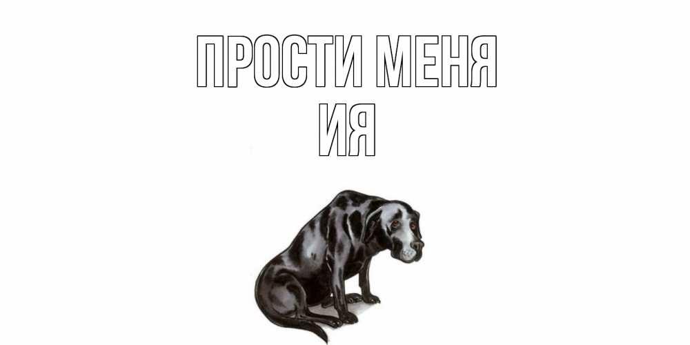 Открытка на каждый день с именем, Ия Прости меня грустная собака на открытке с подписью прости меня Прикольная открытка с пожеланием онлайн скачать бесплатно