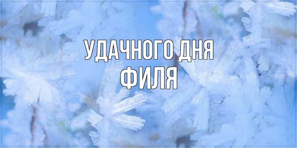 Открытка на каждый день с именем, Филя Удачного дня открытка на зимний день Прикольная открытка с пожеланием онлайн скачать бесплатно