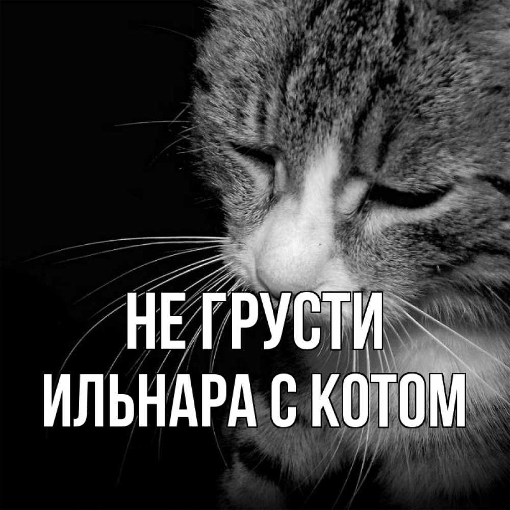 ктиторчук открытки с именем ильнара менее