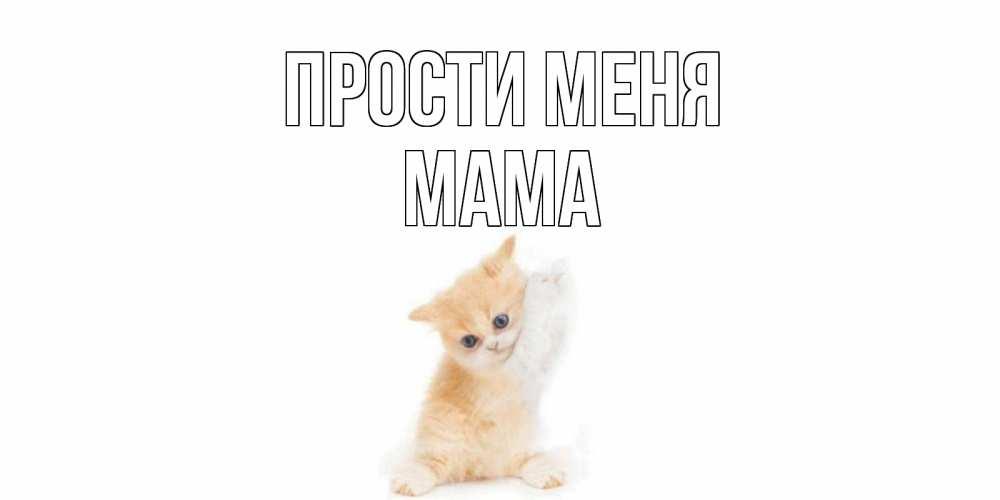 Открытки мама прости меня
