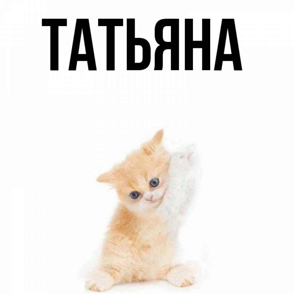 Анимашка надпись, имя татьяна смешные картинки
