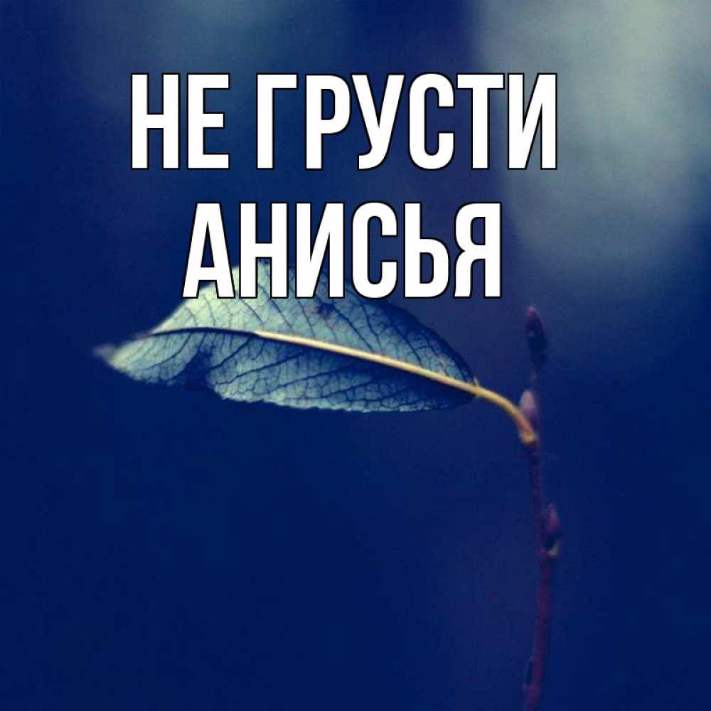 Открытка на каждый день с именем, Анисья Не грусти растение Прикольная открытка с пожеланием онлайн скачать бесплатно