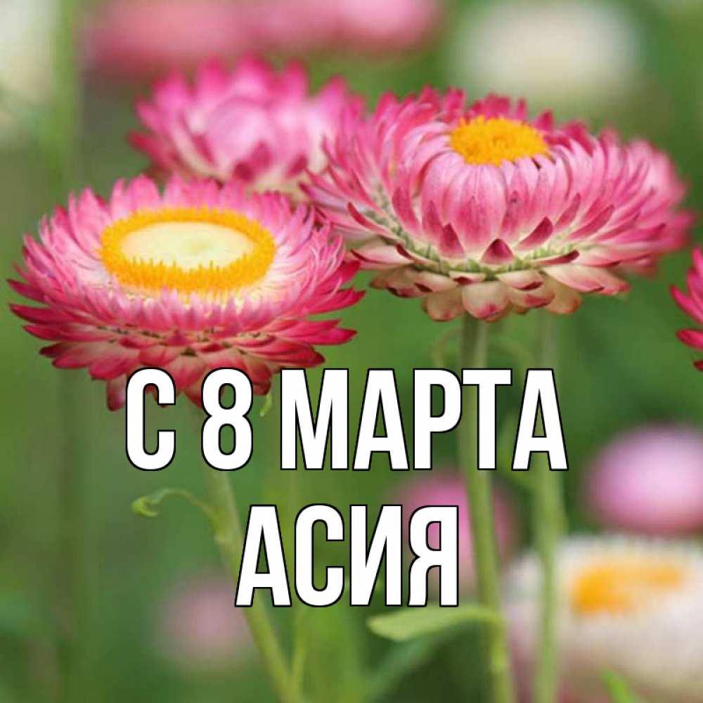 годы картинки асия и цветы как она выглядит