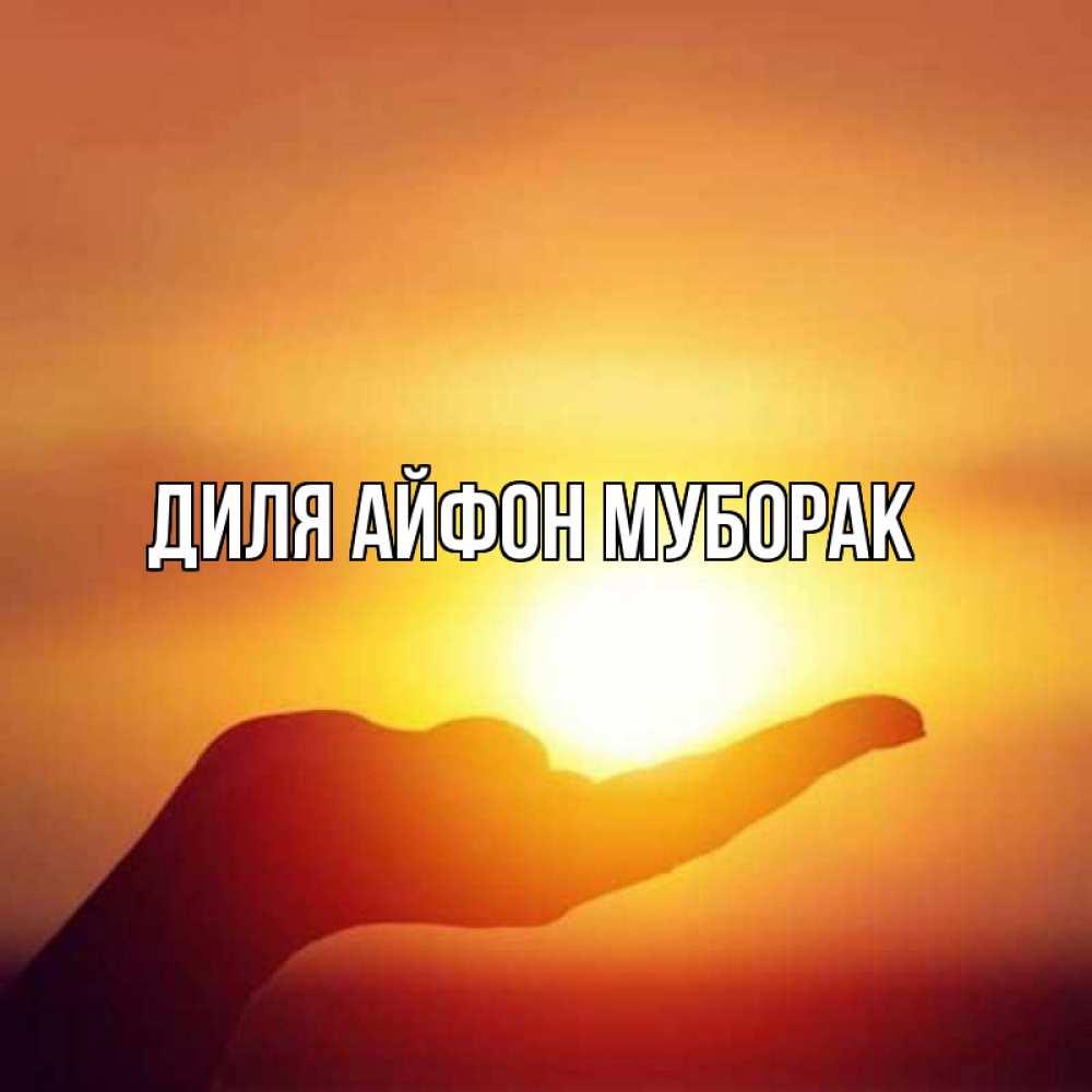 Открытка люблю тебя мое солнышко