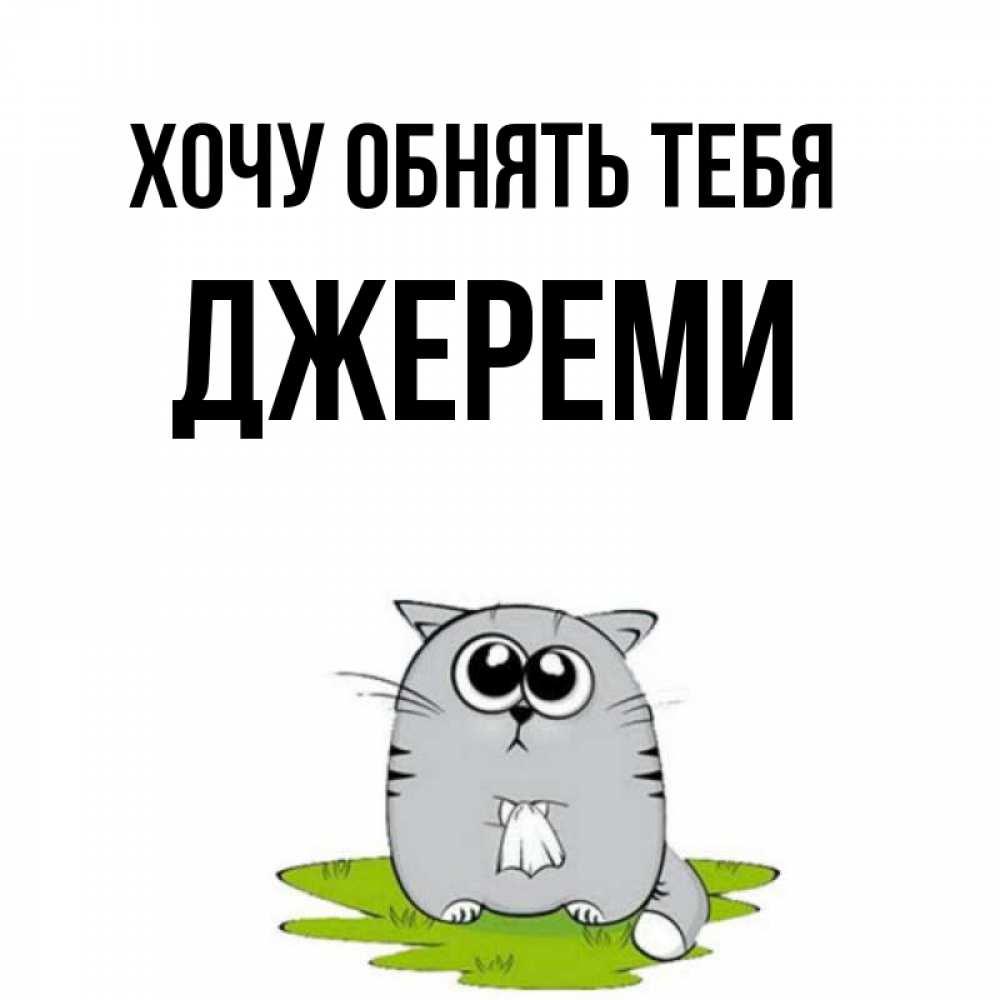 Открытка на каждый день с именем, Джереми Хочу обнять тебя котик теребит платочек сидя на травке Прикольная открытка с пожеланием онлайн скачать бесплатно