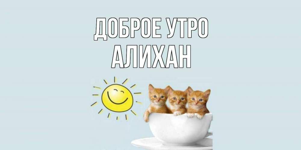 Открытка на каждый день с именем, Алихан Доброе утро котята Прикольная открытка с пожеланием онлайн скачать бесплатно