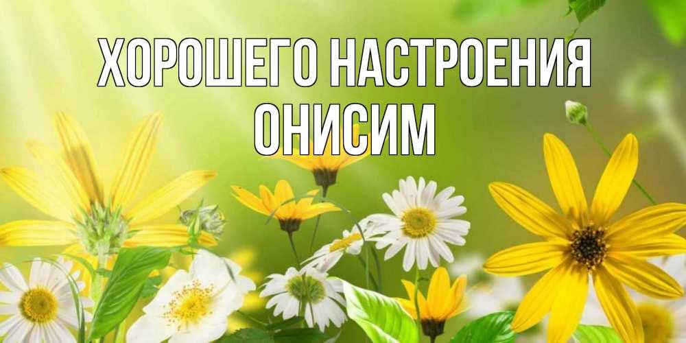 Открытка на каждый день с именем, Онисим Хорошего настроения цветы Прикольная открытка с пожеланием онлайн скачать бесплатно