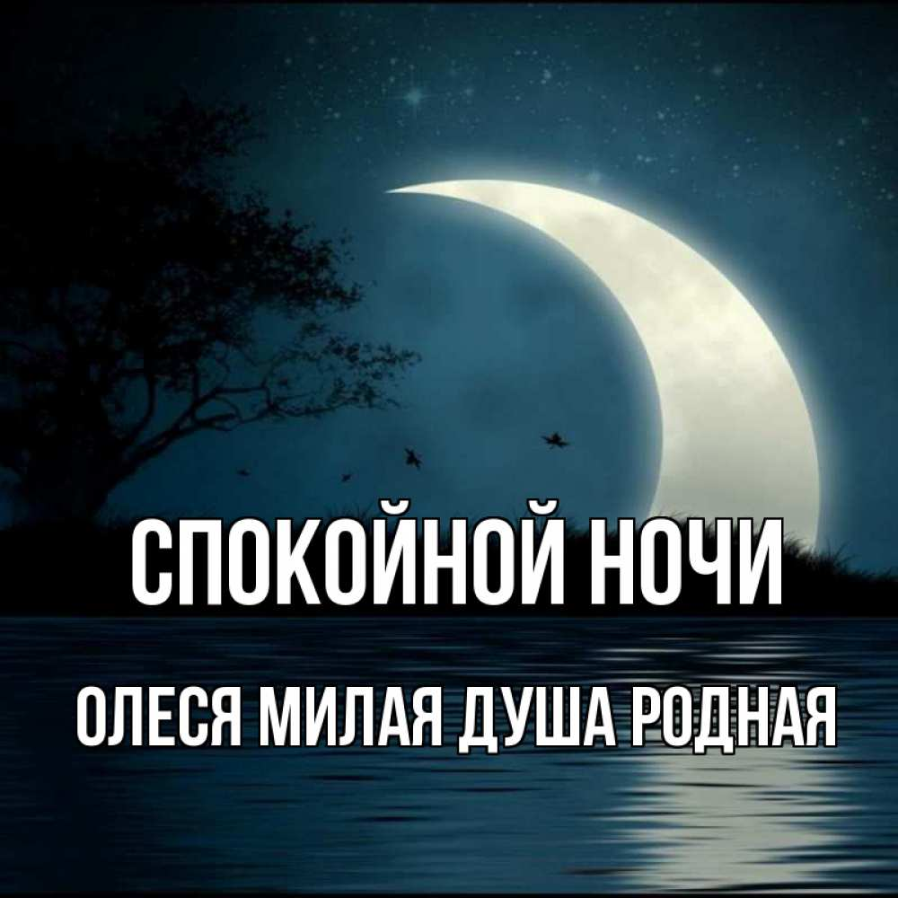 Доброй ночи мой милый картинки с надписями