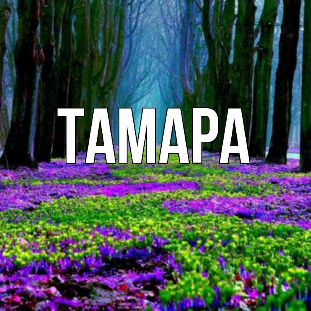 Имя тамара картинка
