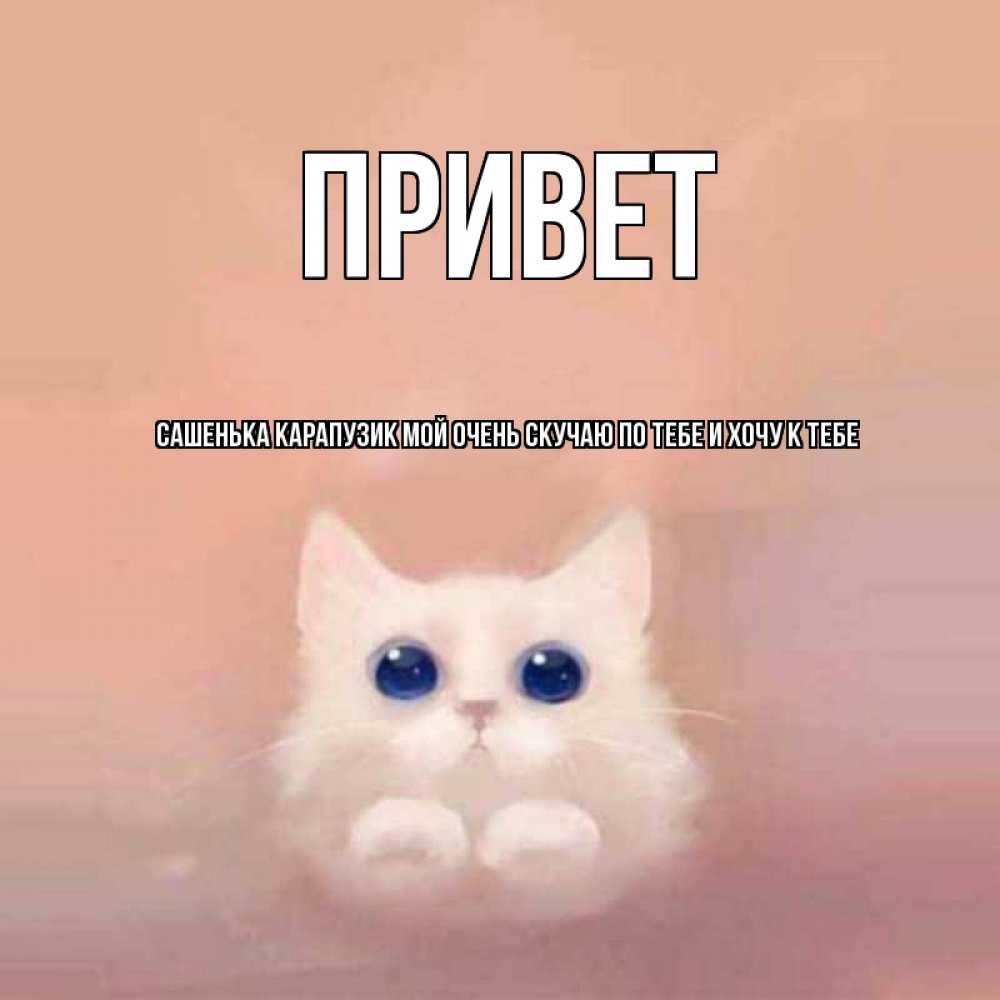 открытки с котиком хочу к тебе