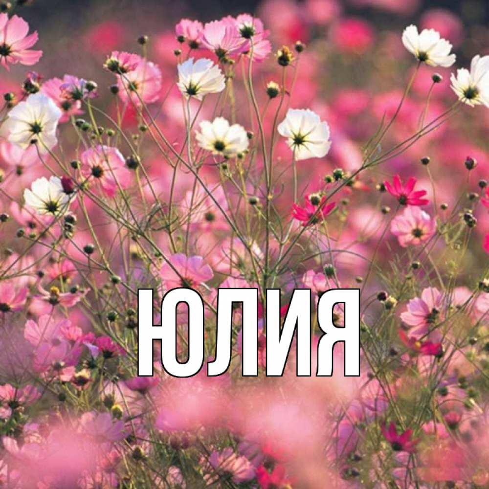 красивые открытки с именами юля недостроенный