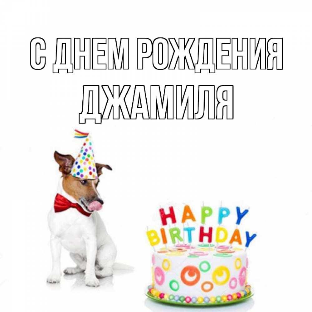 с днем рождения джамиля картинки вторая