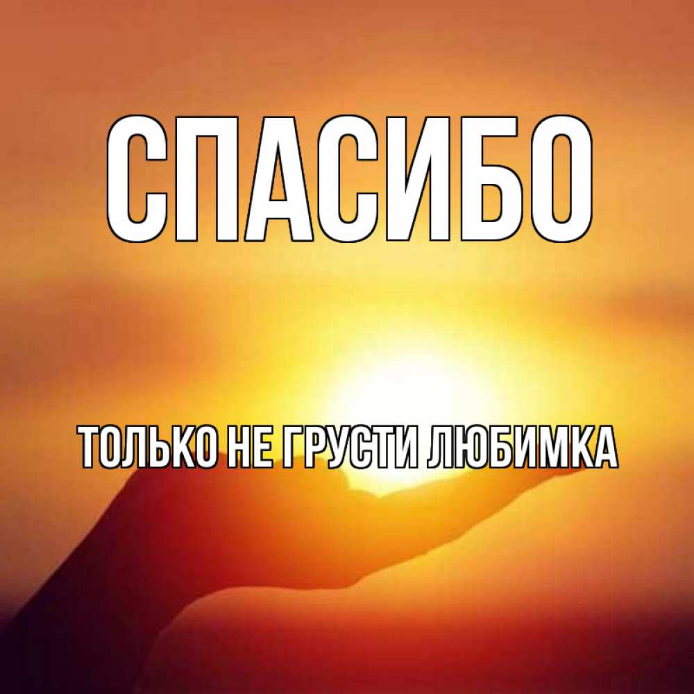 прическа картинки спасибо любимка введения россии моратория
