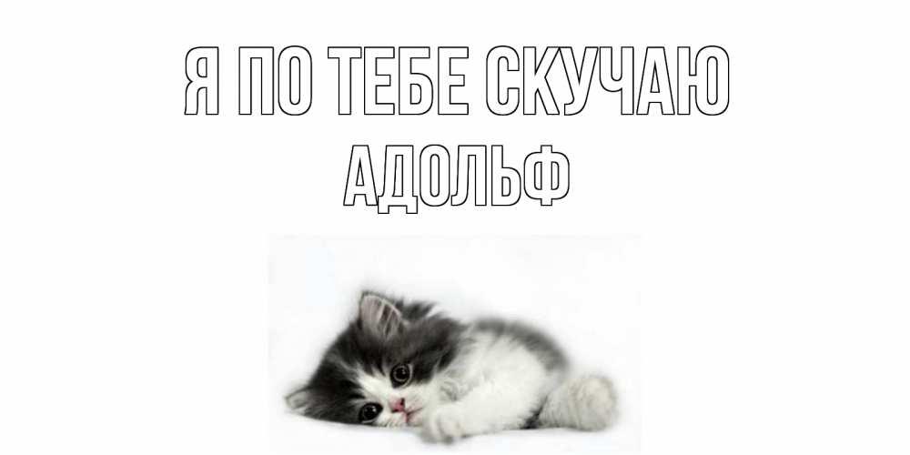 Открытка на каждый день с именем, Адольф Я по тебе скучаю кот, скука Прикольная открытка с пожеланием онлайн скачать бесплатно