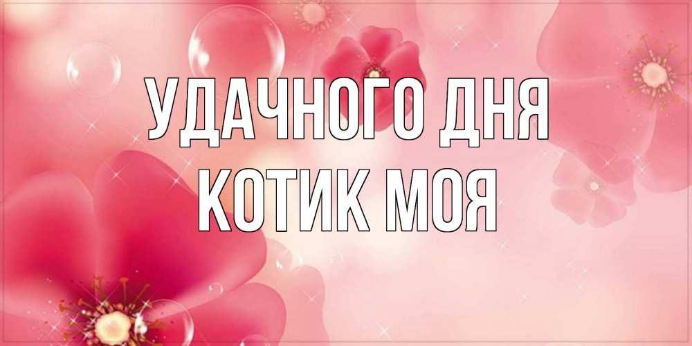 Открытка на каждый день с именем, Котик-моя Удачного дня красивая открытка с цветами Прикольная открытка с пожеланием онлайн скачать бесплатно