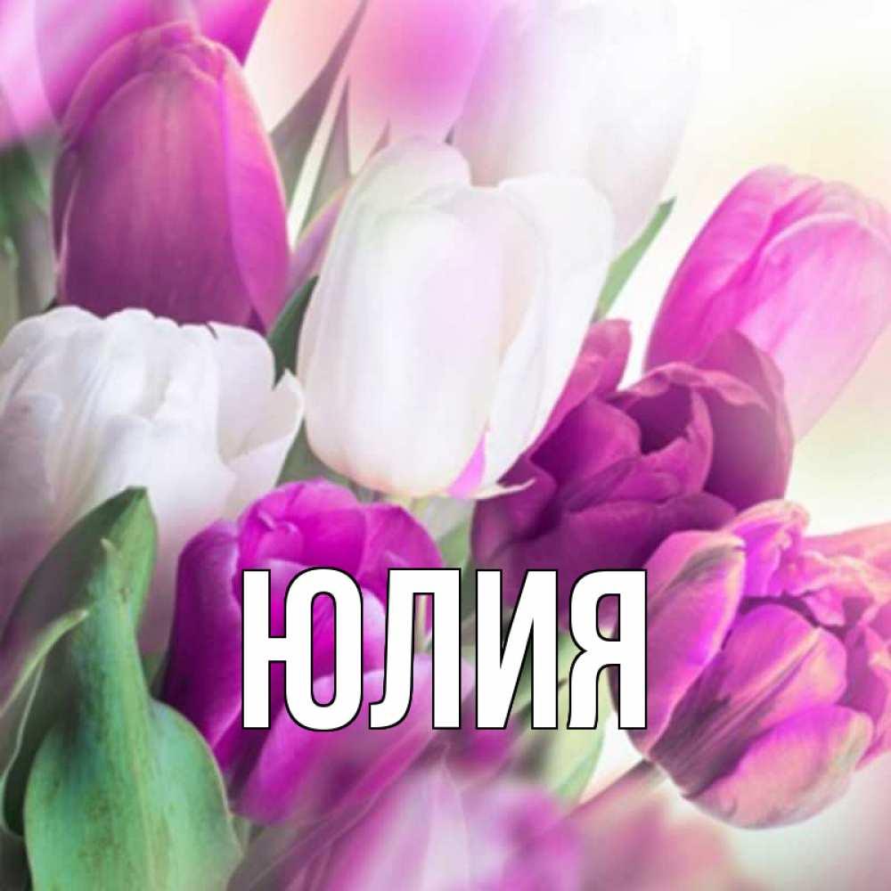 Цветы картинки, красивую открытку для девушки с именем юля