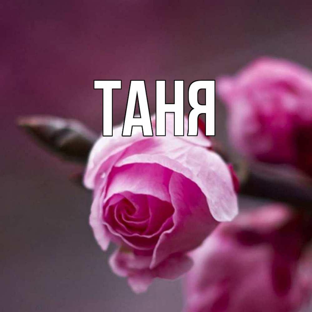 Картинки с именем танюша, друга день