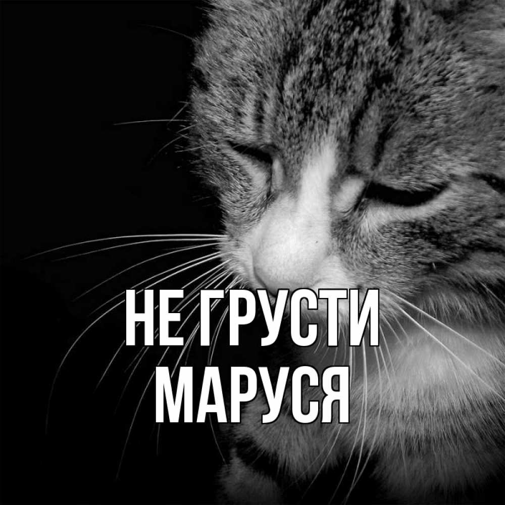 Гифки не грусти, открытка днем