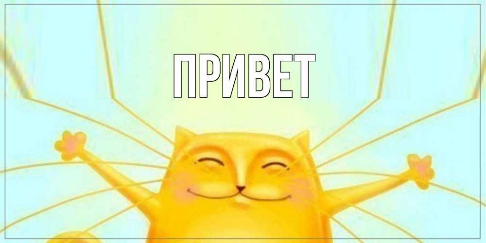 Открытка на каждый день с именем, выберите-имя Привет кот Прикольная открытка с пожеланием онлайн скачать бесплатно