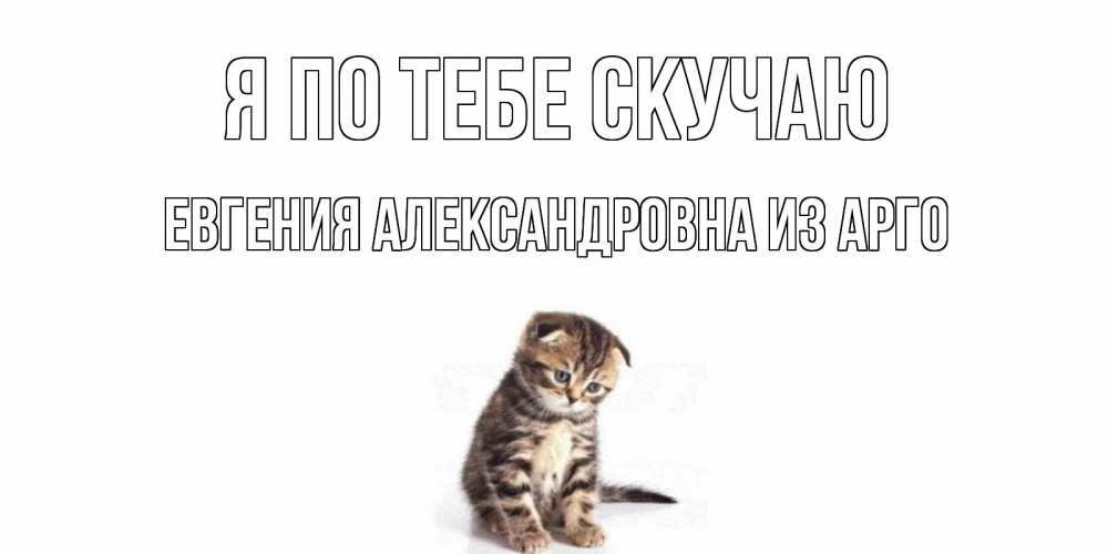 Открытка на каждый день с именем, Евгения-Александровна-из-Арго Я по тебе скучаю кот Прикольная открытка с пожеланием онлайн скачать бесплатно