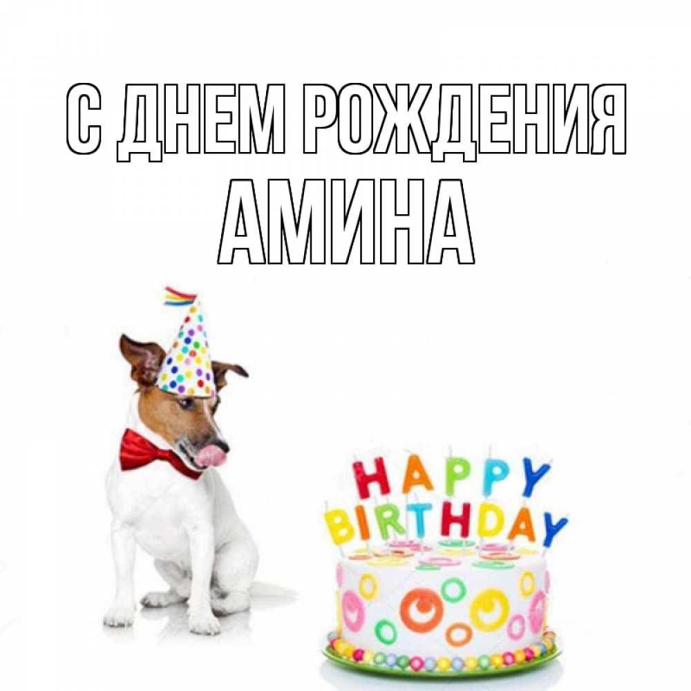 Поздравления с днем рождения амине в картинках, картинки про газик