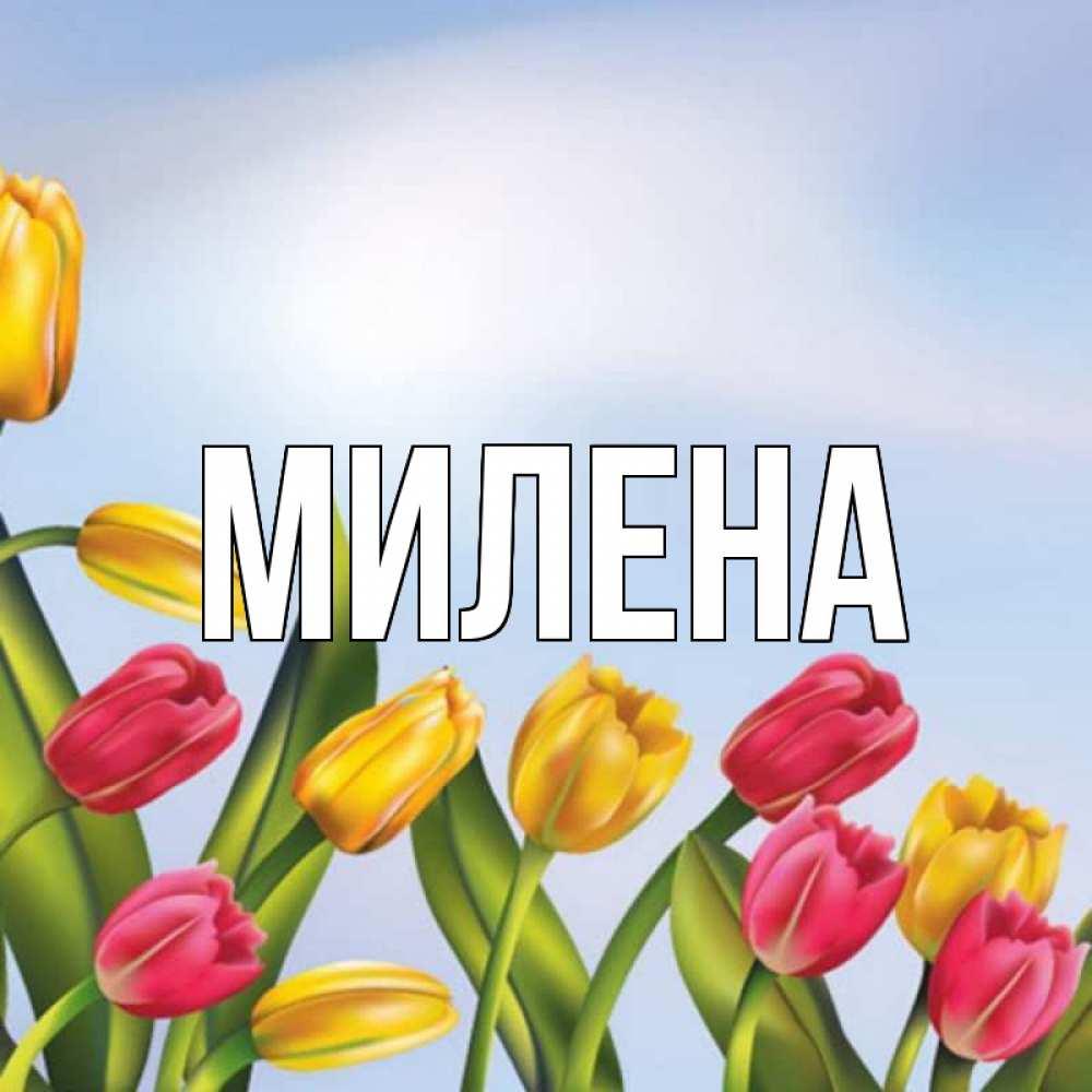 бишкека стихи с именем милена на 8 марта новомодных тенденций