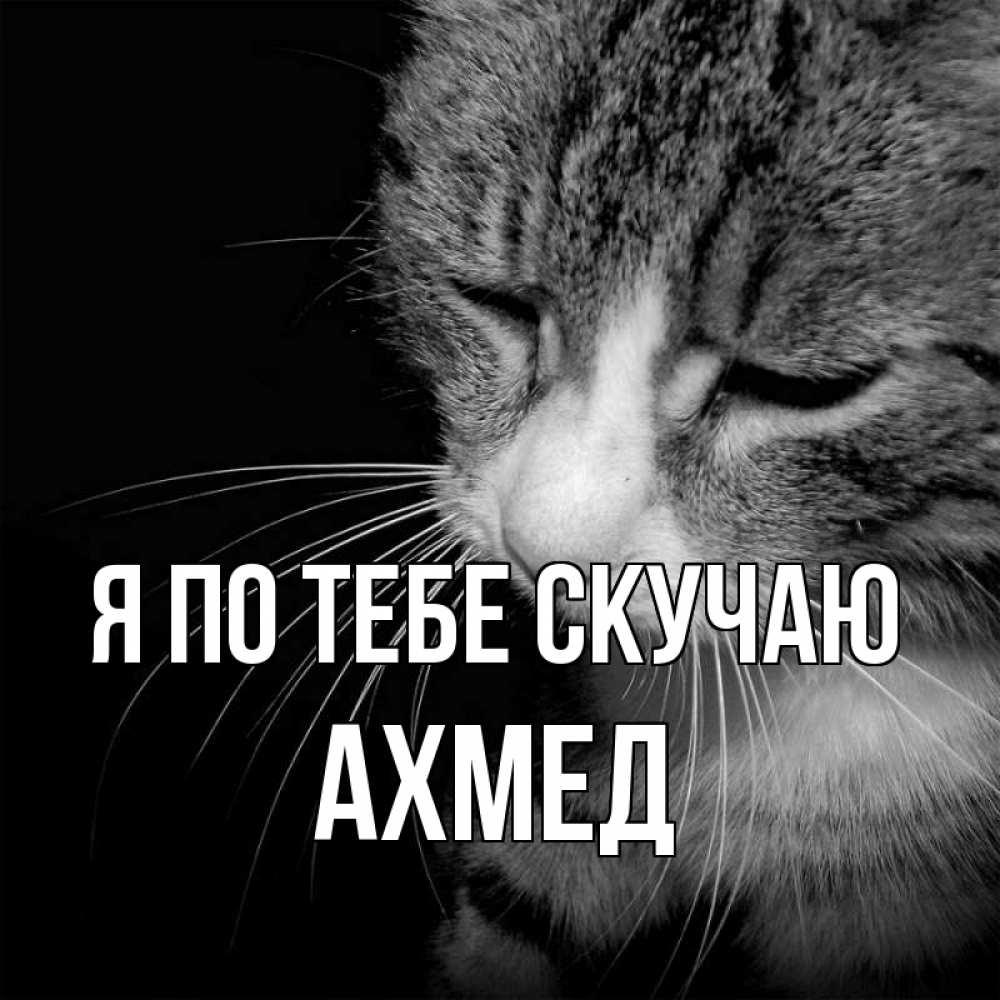 картинки с именем ахмед смешные водогрейный котел