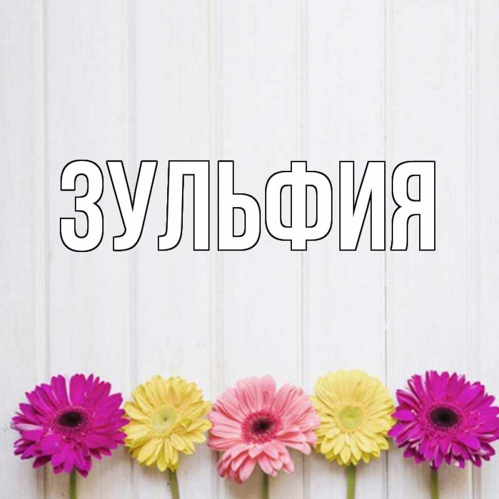 картинки на день рождения с именем зульфия шкафы купе