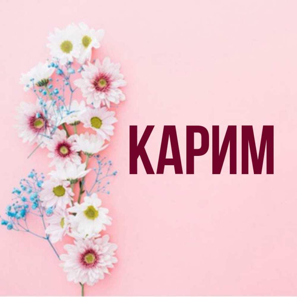 работы филиала, открытки с днем рождения имя карим гельминтов