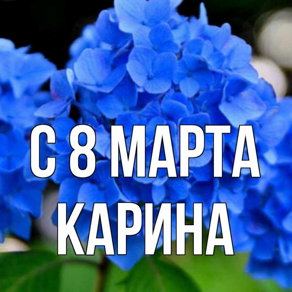 Поздравления с новым годом с днем рождения с 8 марта нас можете