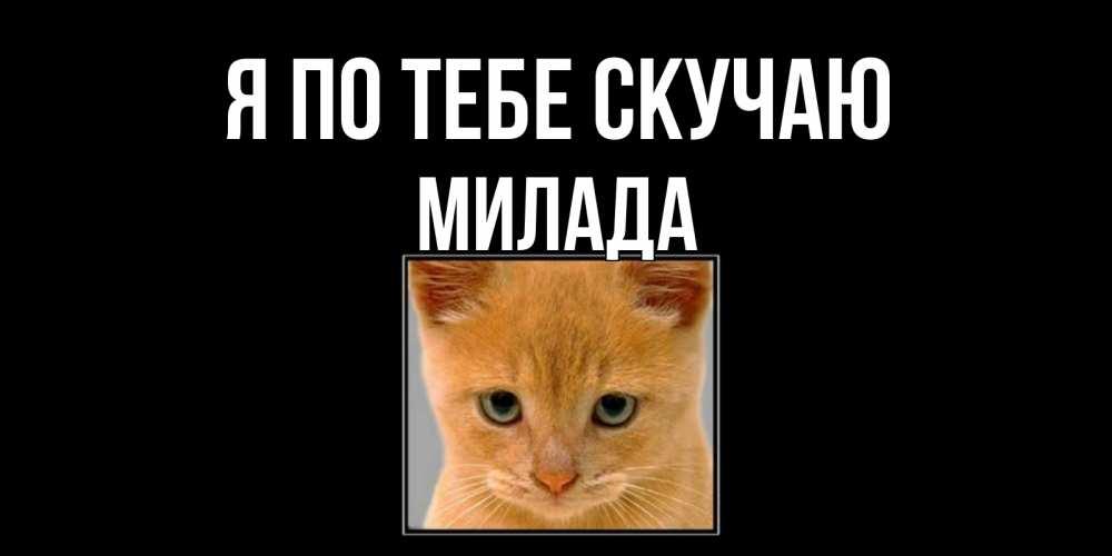 Открытка на каждый день с именем, Милада Я по тебе скучаю открытки рыжий котенок скучает по тебе Прикольная открытка с пожеланием онлайн скачать бесплатно
