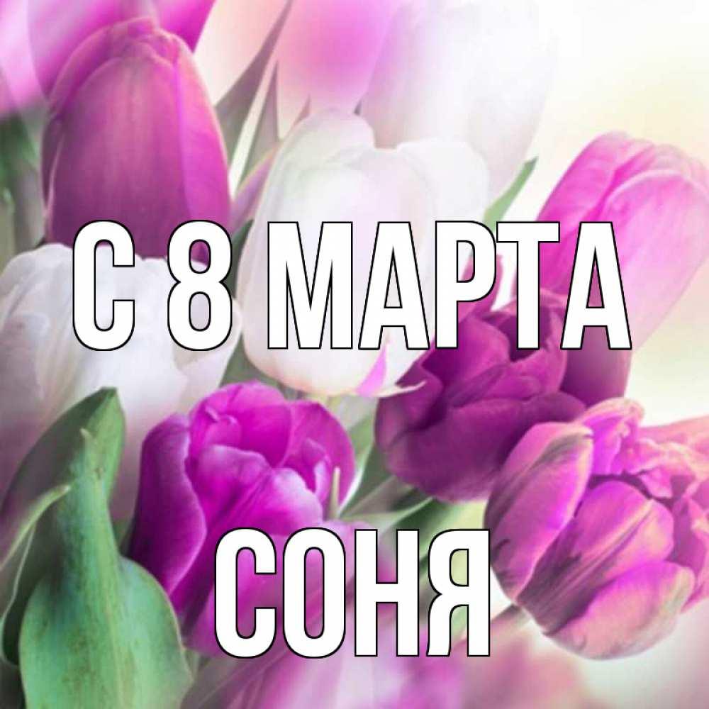 Стихи с именем соня на 8 марта