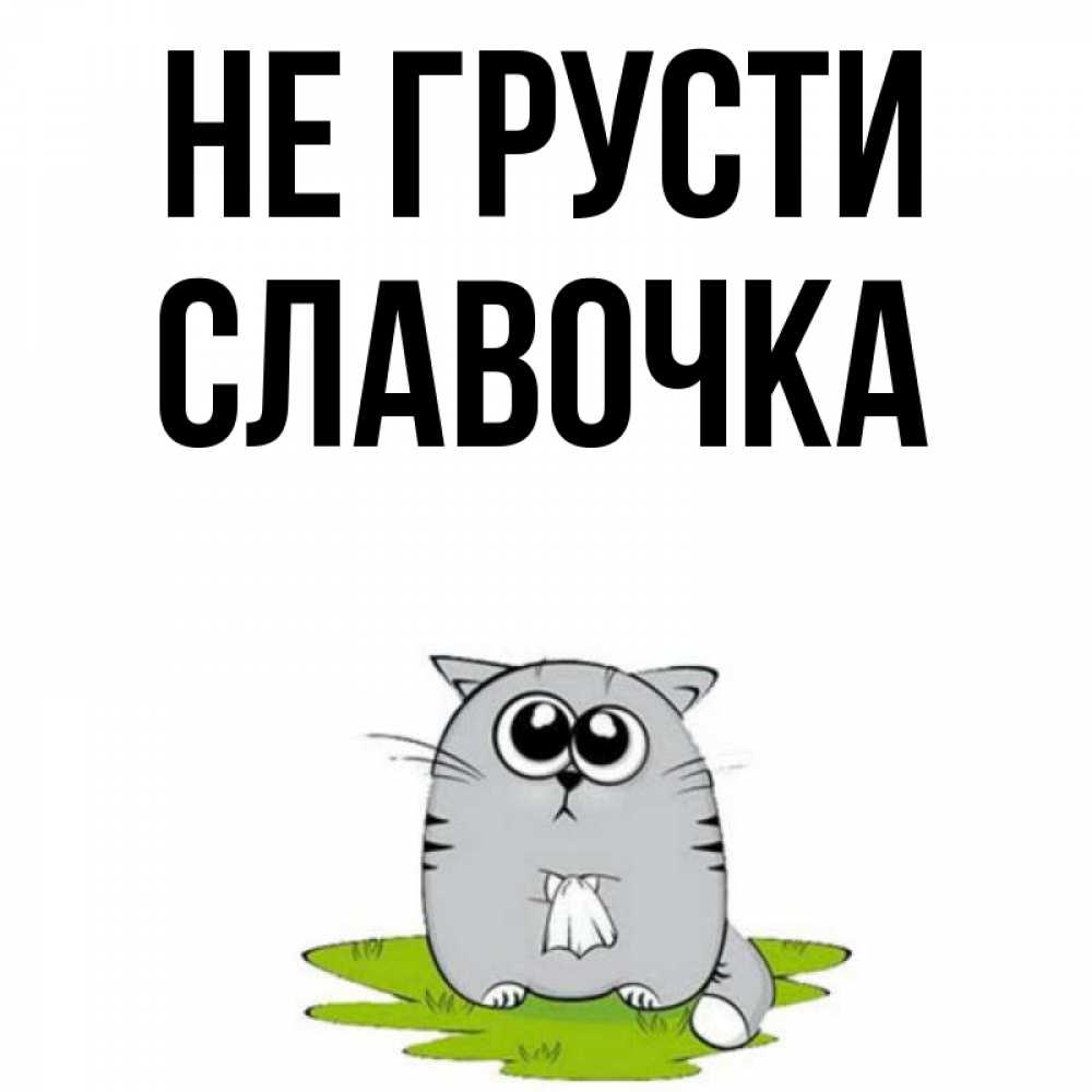 Картинки славочка