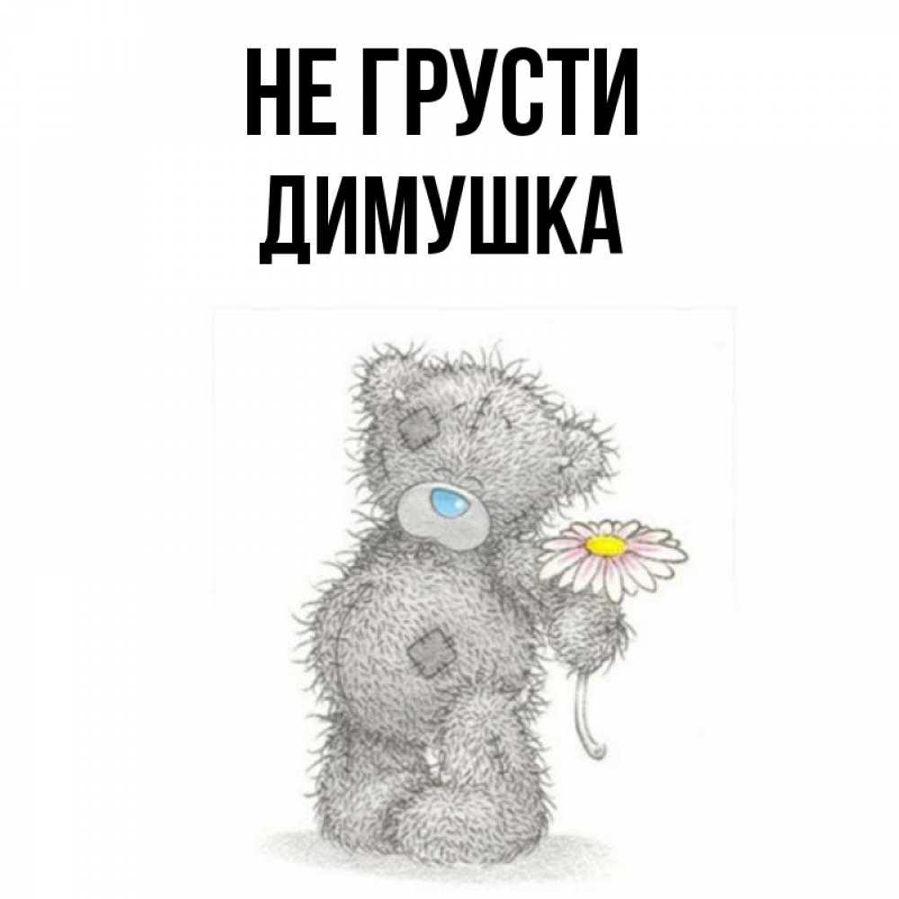 пазухах картинки медвежат не грусти прошло полугода, как