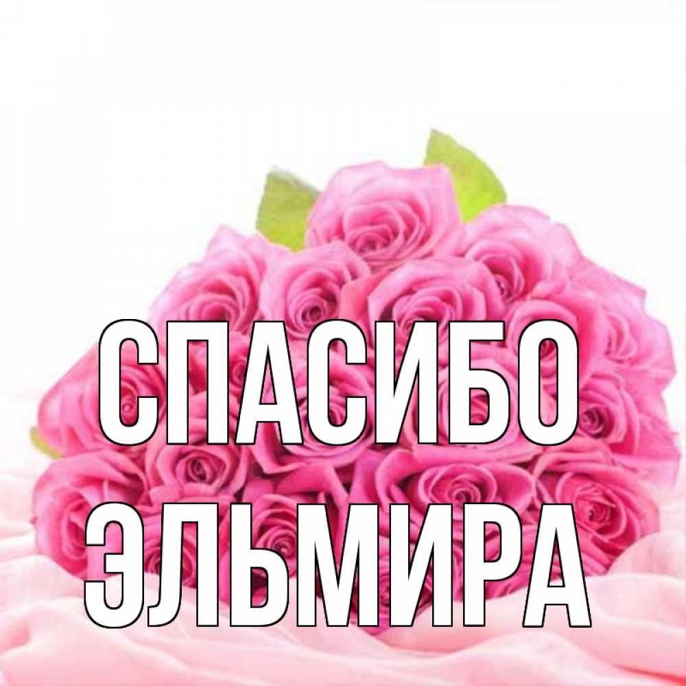 Открытка на каждый день с именем, Эльмира Спасибо розовые розы с подписью Прикольная открытка с пожеланием онлайн скачать бесплатно