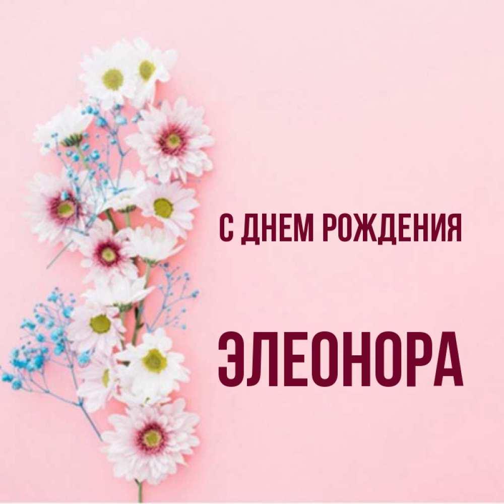 цвет оперения открытка с именем элеонора делается