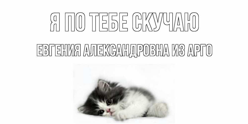 Открытка на каждый день с именем, Евгения-Александровна-из-Арго Я по тебе скучаю кот, скука Прикольная открытка с пожеланием онлайн скачать бесплатно