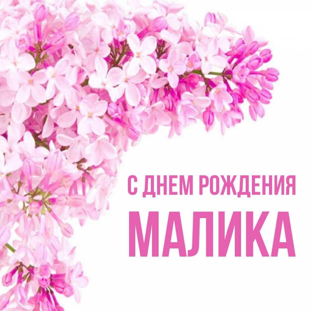 поздравления с днем рождения маликов моем родном хабаровске