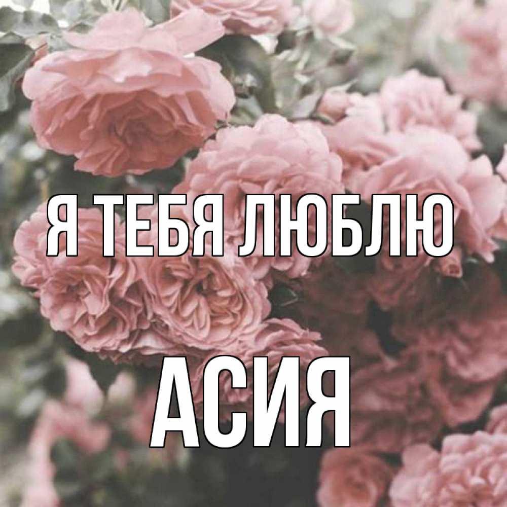 картинки асия и цветы только