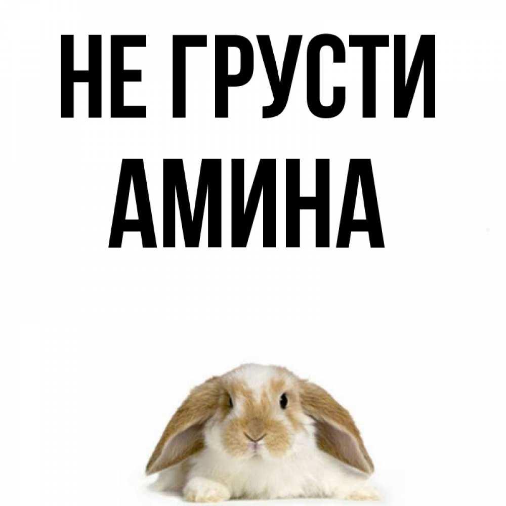 Открытки днем, картинки с надписью не грусти заяц