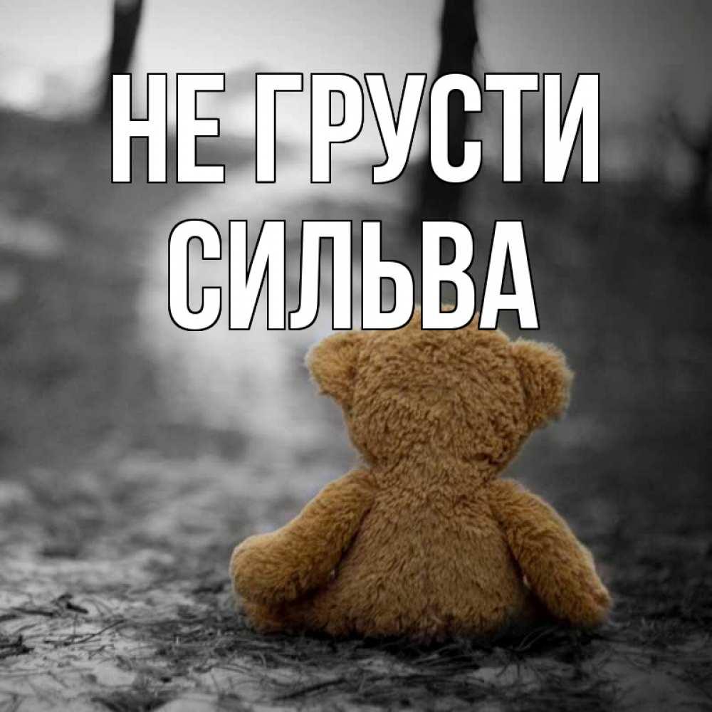 благодарны оказанную картинки медвежат не грусти этой разновидности небольшие
